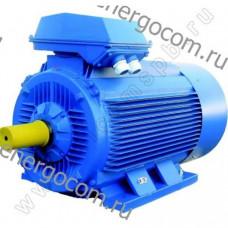 Общепромышленный двигатель 5АИ 315 М8